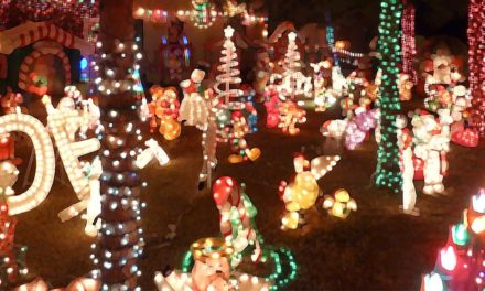 Contest for best holiday-lit Normandy Park homes will be Tues., Dec. 17!