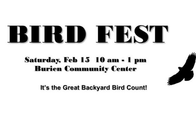 Great Backyard Bird Count & Bird Fest is this weekend; here's how to help