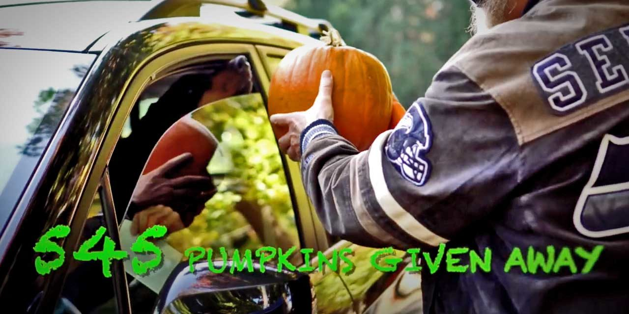 VIDEO: Here's how they safely gave away 545 free pumpkins in Normandy Park