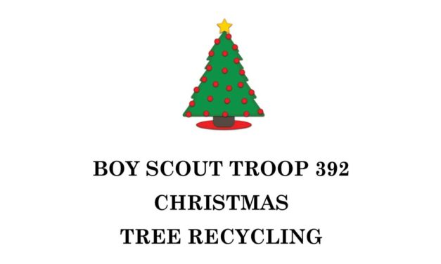 Boy Scout Troop #392 will be recycling Christmas trees this weekend at John Knox