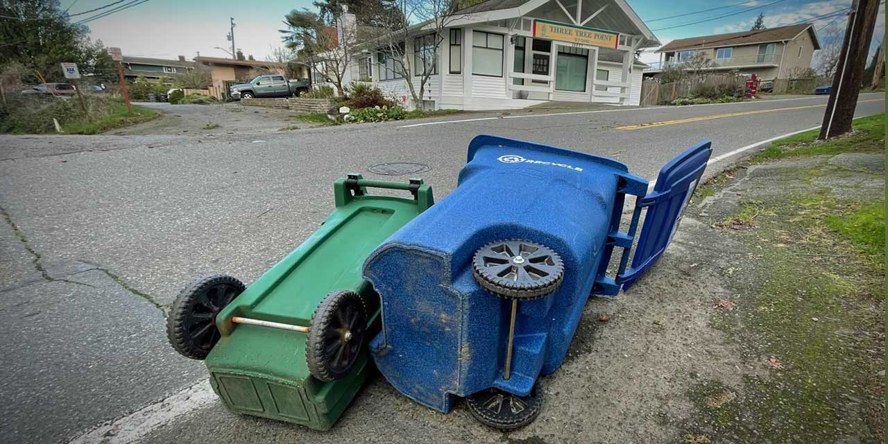 Blustery windstorm knocks out power to tens of thousands overnight