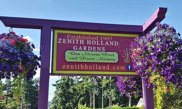 UPDATE: Zenith Holland's Pottery Sale extended through Sunday, Feb. 21