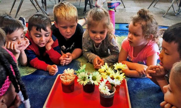 Normandy Park Preschool is now enrolling for the 2021-22 School Year!